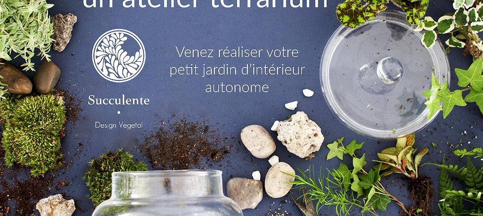 Bon cadeau atelier terrarium