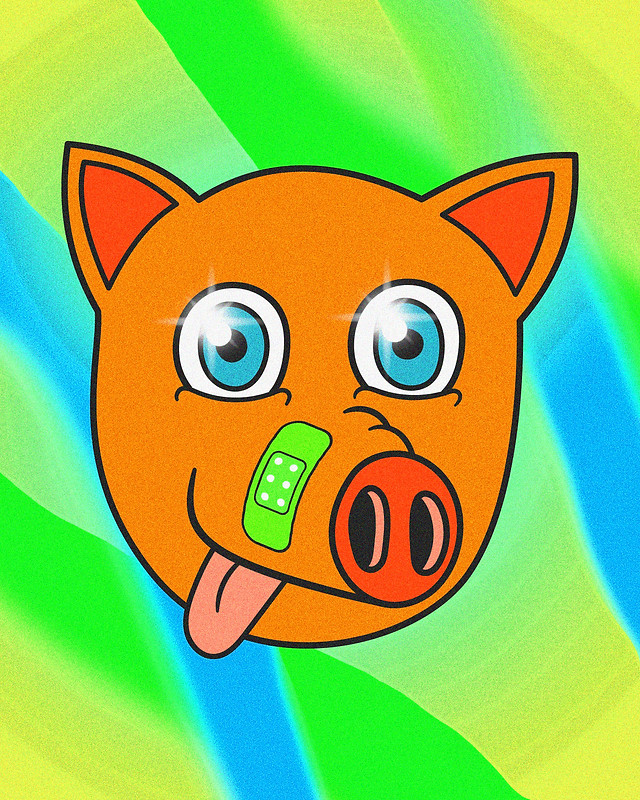 DOG OR PIG?
