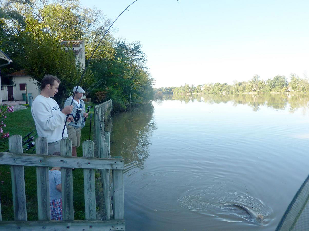combat de pêche au silure