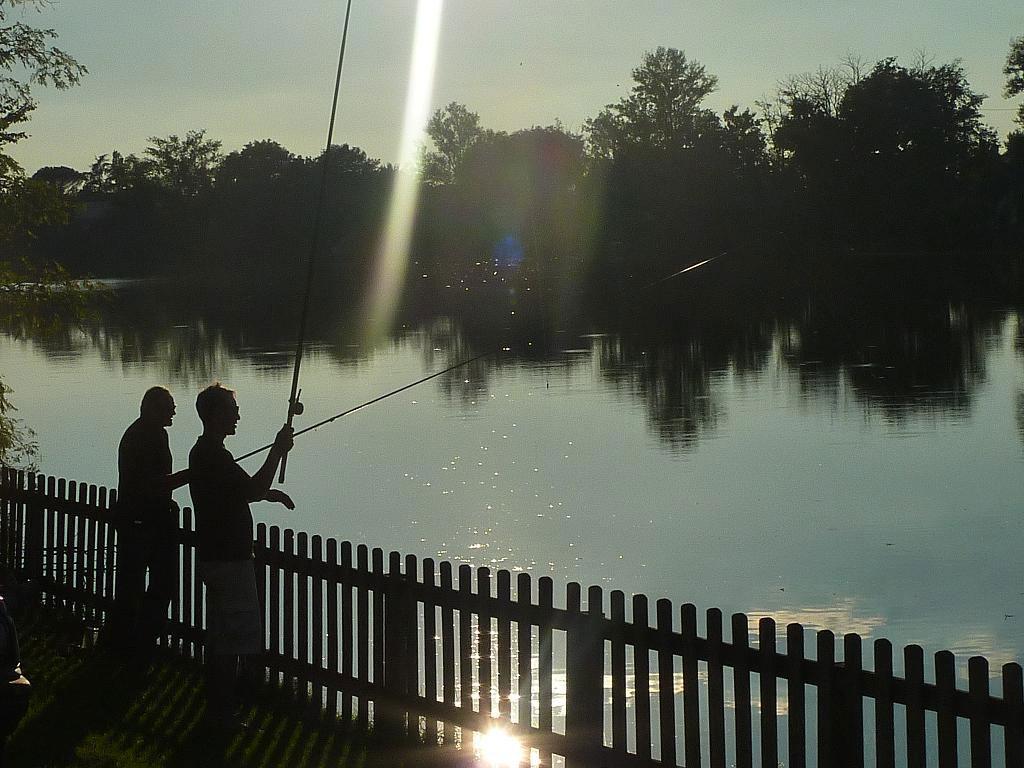 pêche ablettes Tarn