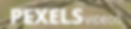 PexelsVideo.png