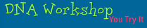 DNAWorkshop.png