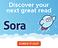 Sora 300x250 3.png