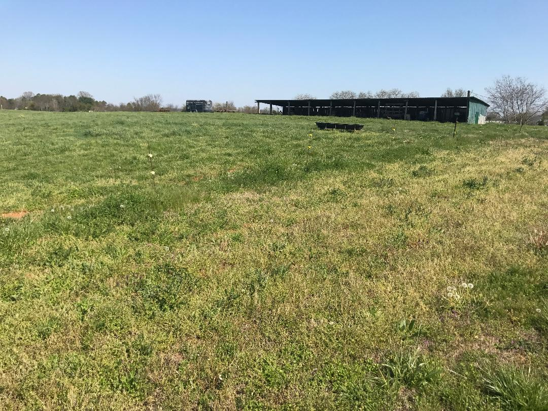 7+/- Acres and Barn