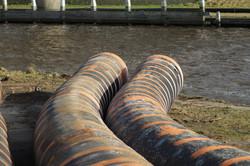 sewage-2295378_1920