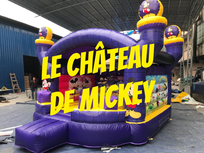Le château de Mickey