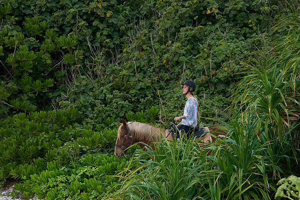 Okinawa, Japan, horse back riding on the beach