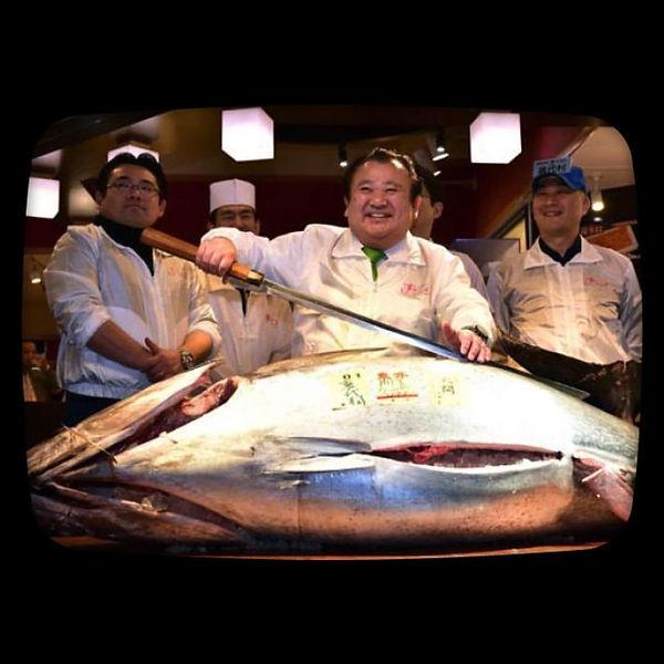 endangered, sushi, tuna, Tsukiji fish market, Tokyo, Japan,