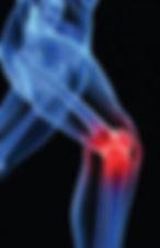 Γόνατο | Φυσικοθεραπεία | P.H.C. Κέντρο Φυσικοθεραπείας