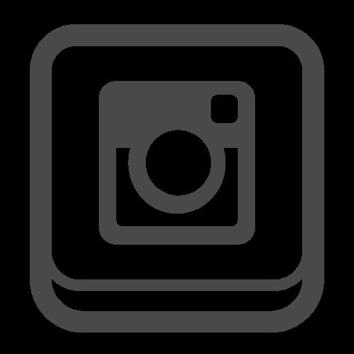 Logo Inst