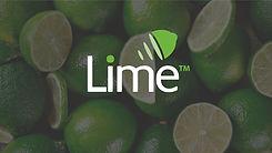 Lime Button.jpg