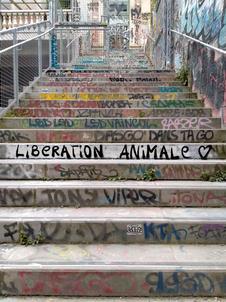 2021 aout  graffiti escalier petite ceinture 14eme (1).jpg