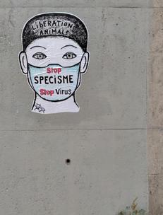 48 - 2020 sept - Paris 14 rue Alain bis.jpg
