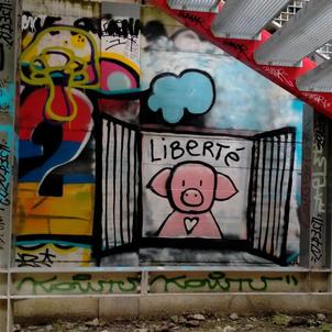 2021 aout 19 graffiti cochon 1.jpg