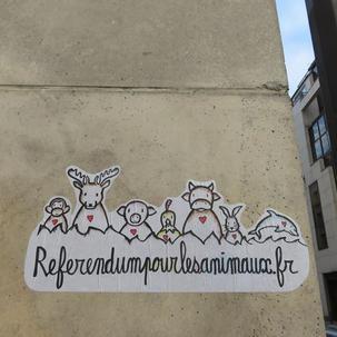47 - 2020 juillet - Paris 14.jpg