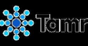 Tamr_Logo_edited.png