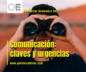 Post Newsletter Noviembre 2020.png