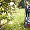 Thumbnail: Mountfield S421 PD 41cm self propelled mower