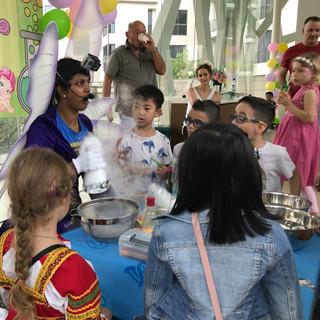 Fairy science birthday