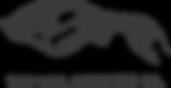 veil_full_logo.pdf  HIGH RES .png