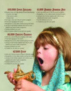 AAsponsor Brochure FINAL_Page_3.jpg