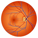 Retina image