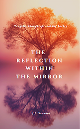 JJSVNT-Thereflectionwithinthemirror.PNG