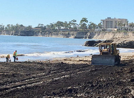 """Inside the Montecito Catastrophe Cleanup: """"It's Indescribable What Happened Out There"""""""