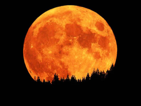 Harvest Moon Looms, as Earthly Tribulation and Political Weirdness Shadow Campaign