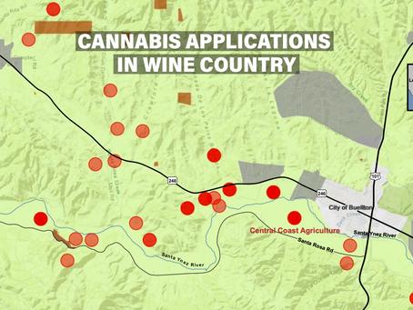 Santa Barbara County's Pot Wars Raging in Wine Country