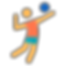 icons8-volleyball-player-filled-96.png