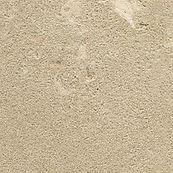 Eco friendly building materials, Oyster limestone