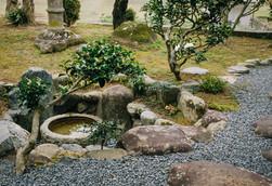 terrace-gallery11.jpg