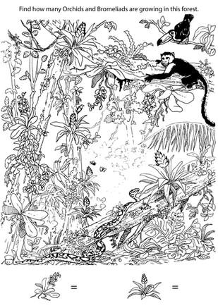 Jaguar activity book Ink on paper 2018
