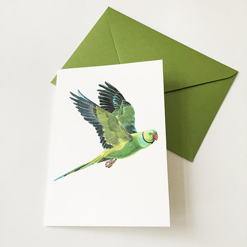 Greeting card with Pearlescent envelope - Ringneck parakeet