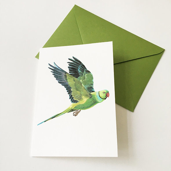 Greeting card with Pearlescent envelope - Ringneck parakeet