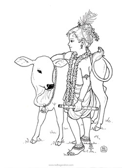 Gopal with his calf