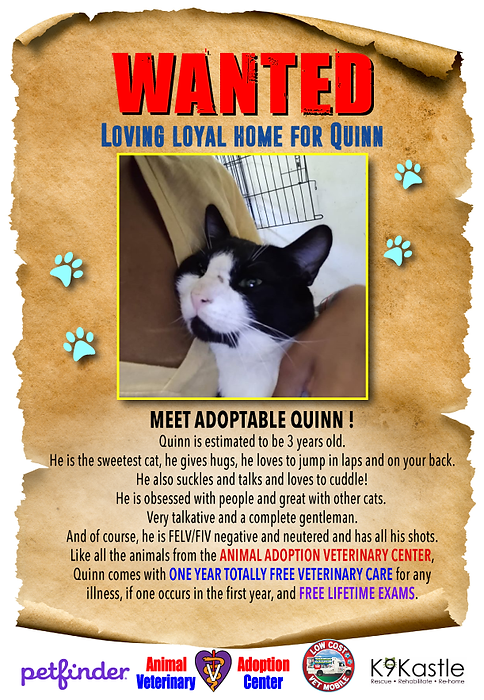 QUINN_wanted_flyer_1.png