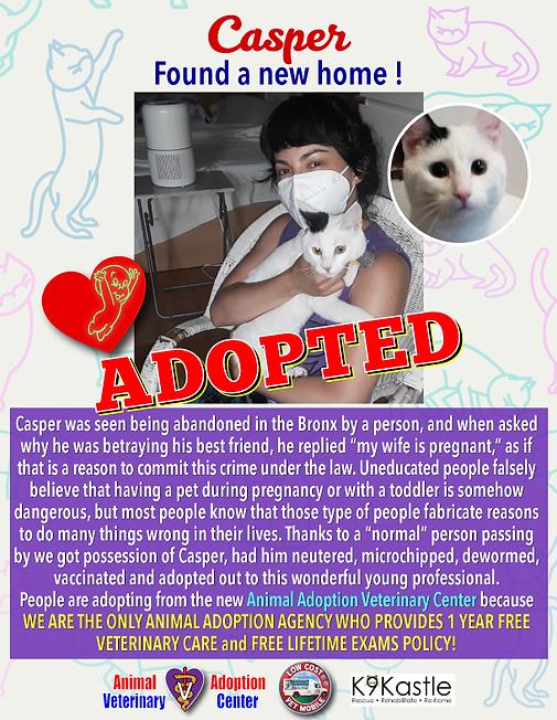 Casper_adopted_flyer_2.png