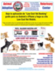 Flyer 2019 back Span 4 website.jpg