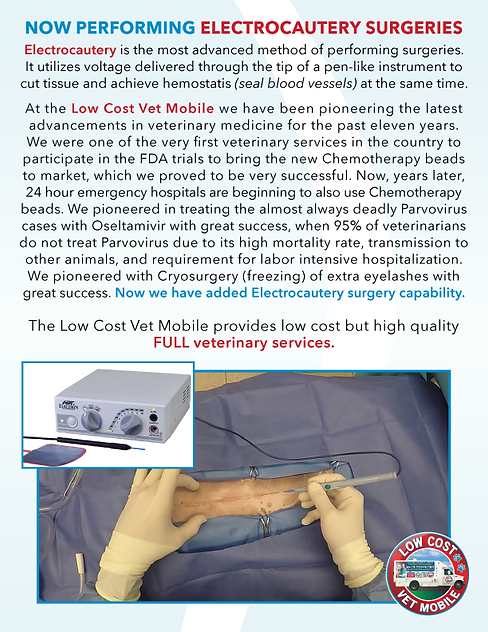 LCVM_electrocautery_ad_2021.png