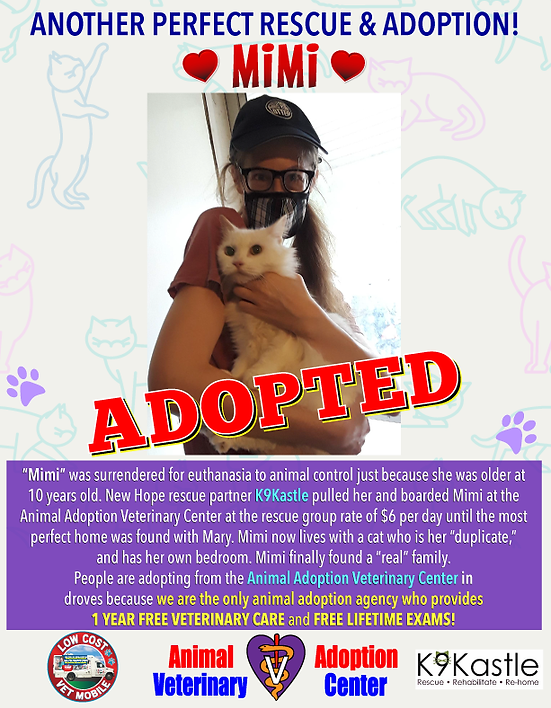 mimi_adopted_poster_new_pic.png