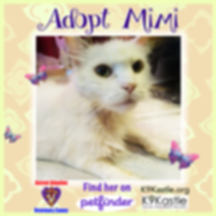 adopt_MIMI.png