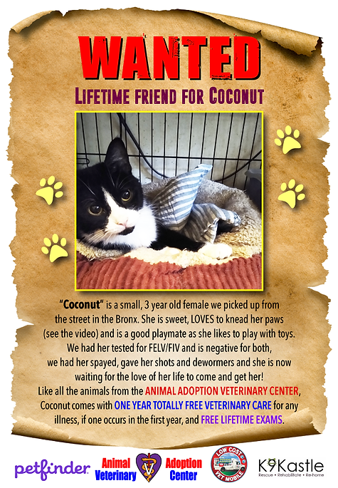 coconut_wanted_flyer_2.png