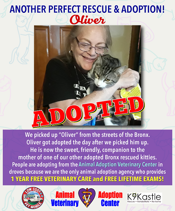 Oliver_adopted_poster_1.png