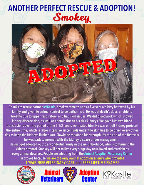 smokey_adopted_flyer_2020.png