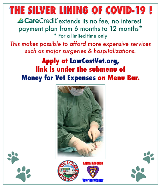 lcvm_carecredit_ad_3.png