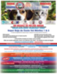 Flyer 2019 front Span 4  website.jpg