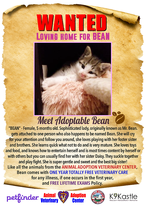 wanted_Bean.png