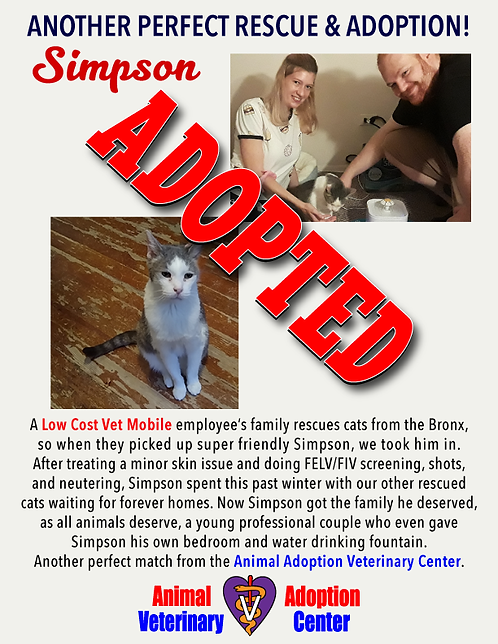 simpson_adopted_flyer_1.png